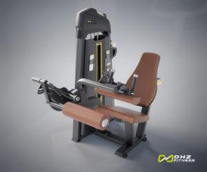 دستگاه بدنسازی پشت پا نشسته DHZ سری evost